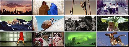 Photography of the year finalists 2006