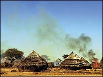 Tama village in Darfur burns after an attack by government-backed militias