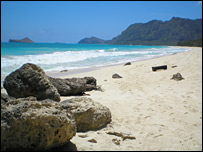 Landscape shot of Hawaiian beach