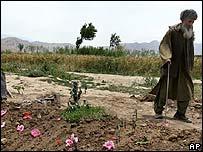 Elderly man walks past the grave of Zakia Zaki