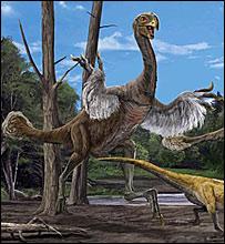 Художественное изображение Gigantoraptor  (Zhao Chuang и Xing Lida/IVPP)