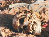 Photo by Julie Flint: Skeleton in the sand in Um Sidir