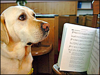 Teddy the singing guide dog