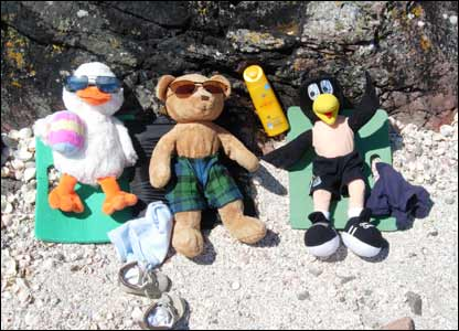 Toys sunbathing on beach
