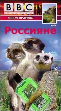 Одна из картинок, появившихся в рунете (Автор изображения: пользователь livejournal.com _quasar)