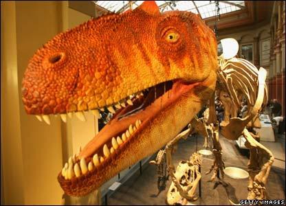 Dinosaur in Berlin Museum