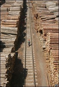 Logs (Image: AP)