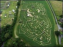 Owl-shaped maze