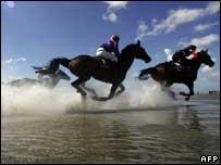 Horse race, AFP