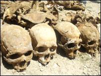 Skulls in the mass grave