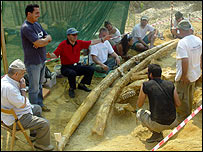 Palaeontologists with mastodon tusks in Greece (pic: Prof Evangelia Tsoukala, 2007)