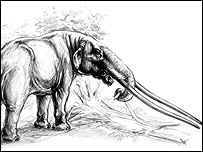 Artist's impression of mastodon (pic: by Remie Bakker, courtesy of Dick Mol)