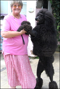 Lynne Day with Blue the poodle