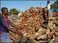 Firewood vendors pile up stocks of firewood at Harare's main marketplace