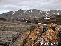 Landscape  Image: Jim McNeill