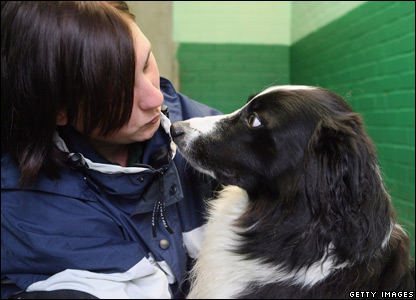 A woman with a collie dog