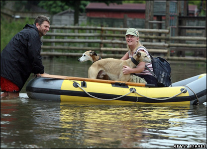 Rescued dogs in a boat