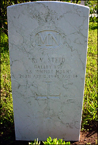 Raymond Steed's grave