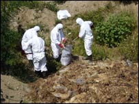 Workers clean up the Comana dump