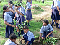 Record tree-planting attempt in Uttar Pradesh