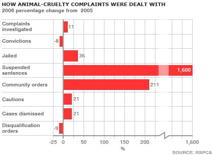 Animal cruelty complaints graph