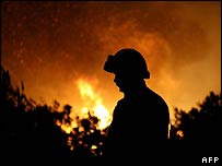 Firefighter on the Spanish Canary island of Tenerife (1 August)