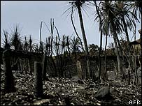 Fire damage on the Spanish Canary island of Gran Canaria (1 August)