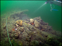 Wooden remains of the settlement found on the seabed (copyright Simon Brown)