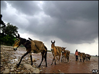 Mules carry construction materials across the Tawi River in India (23 July 2007)