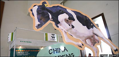 Cut-out cow advertising milk