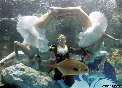 Ukrainian synchronised swimmers