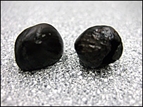8,000-year-old nuts found at Bouldnor Cliff