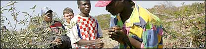 A South African farmer with alleged illegal Zimbabwe migrants