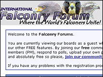 Falconry forum