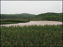 A flooded field (image: WFP)