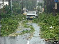 Fallen branches and flooding in Martinique