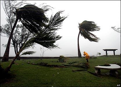 Trees bending in wind on Kingston sea front