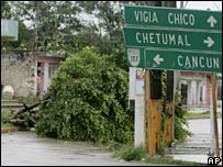 A ripped-out tree is seen at a street in Felipe Carrillo Puerto, south-eastern Mexico