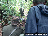 Rangers filming (Image: WildlifeDirect)