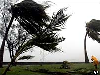 Winds bent  by Hurricane Dean