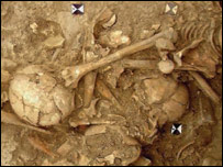 Bones from mass burial  Image: Science