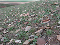 The surface of Tell Brak is covered with broken pottery and other debris  Image: Jason A Ur