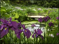 Iris Dell at Wakehurst Place