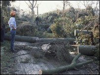 Storm damage at Wakehurst Place in 1987