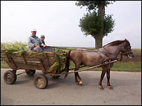 Farmer and son on horse-drawn cart