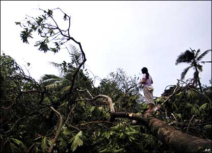 A woman stands on a fallen tree in Puerto Cabezas, Nicaragua