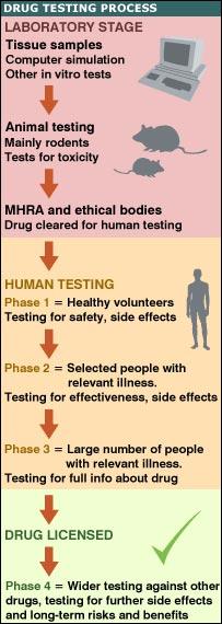 drug testing process