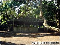 Bukima patrol post (Image: WildlifeDirect)