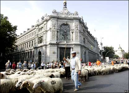 A shepherd leads a flock of sheep past the Bank of Spain in Madrid.