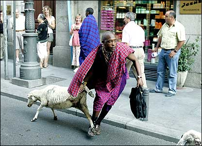 An African herdsman drags a wayward sheep through the streets.